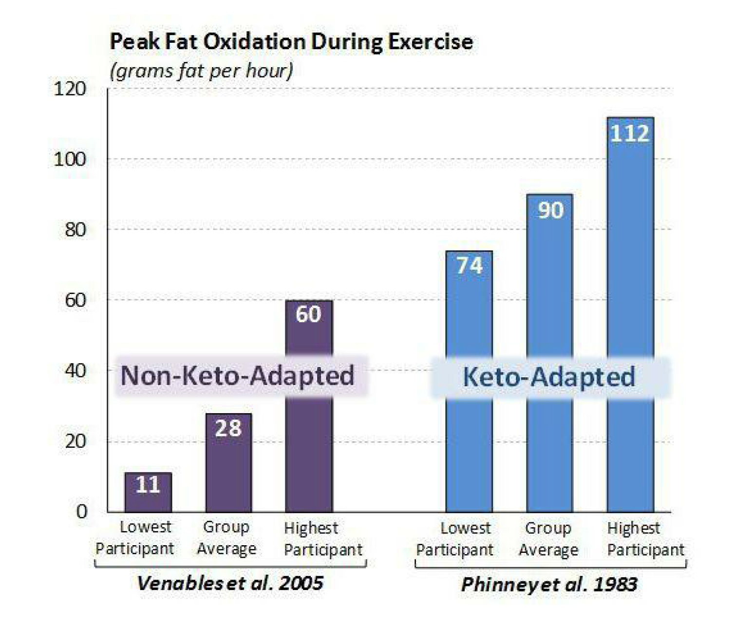 Keto-Adapted Download